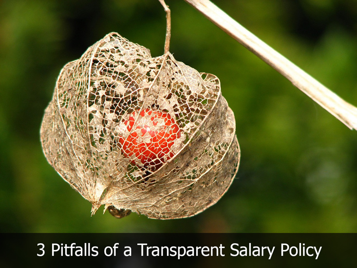 transparentsalarypolicy