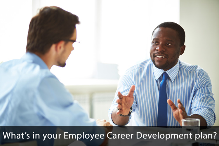 employeecareerdevelopmentassessment